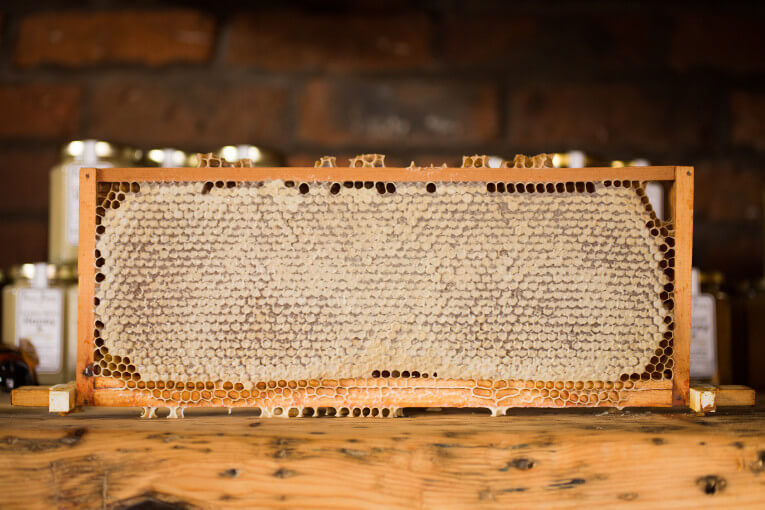 Honeycomb of Beeswax - Photo by Jonathan Farber on Unsplash
